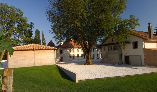 Marronier du Château le Rosey à Bursins