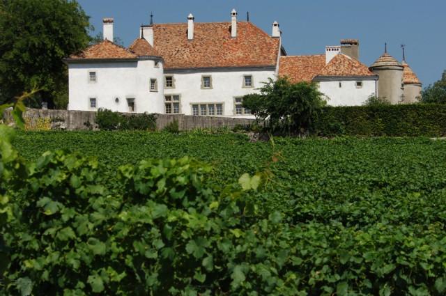 Vue du Château Le Rosey à Bursins