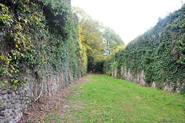 chateau_ripaille_arboretum