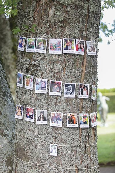 cérémonie laïque arbre