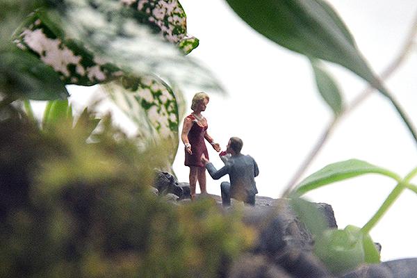 décoration botanique mariage
