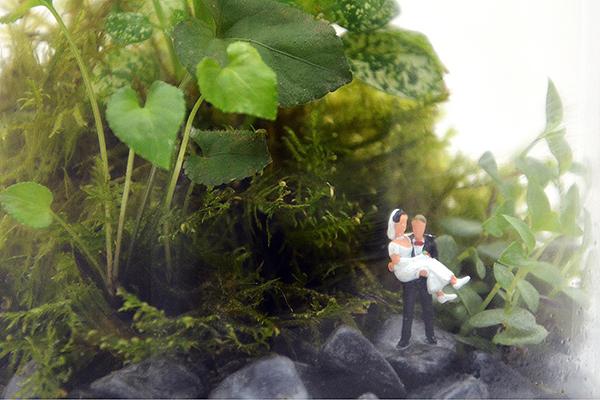 décoration plantes mariage