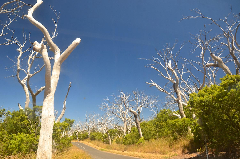Paysage grandiose en Australie